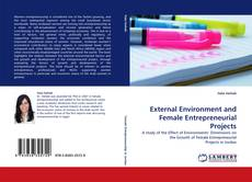 Bookcover of External Environment and Female Entrepreneurial Projects