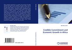 Couverture de Credible Commitment and Economic Growth in Africa