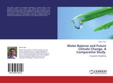 Bookcover of Water Balance and Future Climate Change. A Comparative Study.