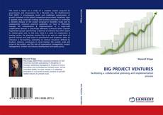 Bookcover of BIG PROJECT VENTURES