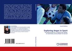 Bookcover of Exploring Anger in Sport