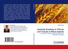Portada del libro de Haploidy Breeding in Triticale and Triticale X Wheat Hybrids