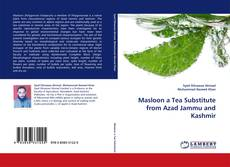 Portada del libro de Masloon a Tea Substitute from Azad Jammu and Kashmir