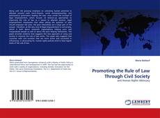 Bookcover of Promoting the Rule of Law Through Civil Society