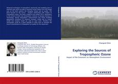 Bookcover of Exploring the Sources of Tropospheric Ozone