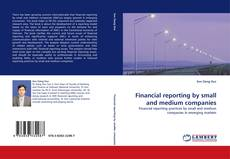 Обложка Financial reporting by small and medium companies