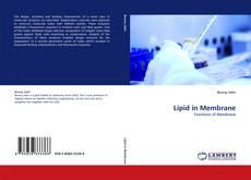 Lipid in Membrane的封面