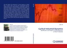 Cyclical Industrial Dynamics kitap kapağı