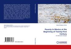 Bookcover of Poverty in Mexico at the Beginning of Twenty-First Century