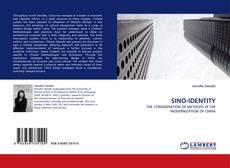 Bookcover of SINO-IDENTITY