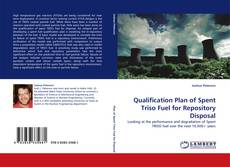 Обложка Qualification Plan of Spent Triso Fuel for Repository Disposal
