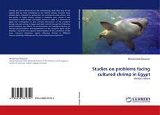 Buchcover von Studies on problems facing cultured shrimp in Egypt