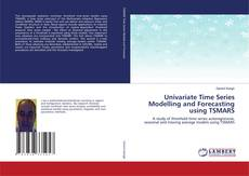 Buchcover von Univariate Time Series Modelling and Forecasting using TSMARS