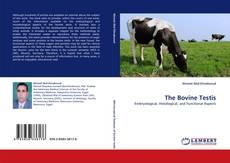 Bookcover of The Bovine Testis
