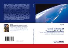 Buchcover von Global Indexing of Topographic Surface