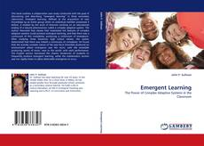 Bookcover of Emergent Learning