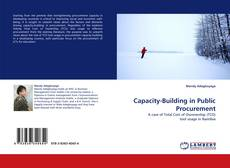 Capacity-Building in Public Procurement kitap kapağı