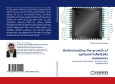 Bookcover of Understanding the growth of epitaxial InAs/GaAs nanowires
