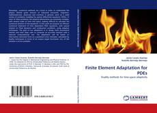 Finite Element Adaptation for PDEs kitap kapağı