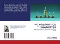 Bookcover of SMEs and enjoyment of the economic human rights: Evidence from Egypt