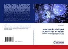 Bookcover of Multifunctional shaped aluminosilica monoliths