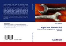 Bookcover of Big Picture, Small Picture