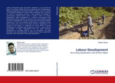 Bookcover of Labour Development