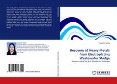 Copertina di Recovery of Heavy Metals from Electroplating Wastewater Sludge