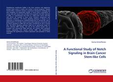 Bookcover of A Functional Study of Notch Signaling in Brain Cancer Stem-like Cells