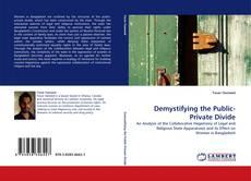 Capa do livro de Demystifying the Public-Private Divide