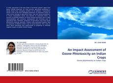 Couverture de An Impact Assessment of Ozone Phtotoxicity on Indian Crops