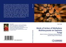 Bookcover of Mode of Action of Methylene Bisthiocyanate on Sapstain Fungi