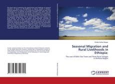 Bookcover of Seasonal Migration and Rural Livelihoods in Ethiopia: