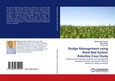 Обложка Sludge Management using Reed Bed System Palestine Case Study