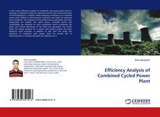 Copertina di Efficiency Analysis of Combined Cycled Power Plant