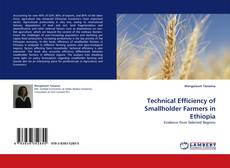 Bookcover of Technical Efficiency of Smallholder Farmers in Ethiopia