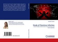 Couverture de Study of Flavivirus infection