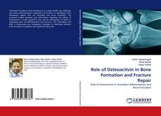 Bookcover of Role of Osteoactivin in Bone Formation and Fracture Repair