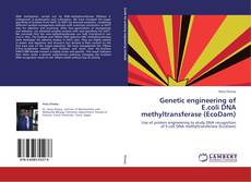 Bookcover of Genetic engineering of E.coli DNA methyltransferase (EcoDam)