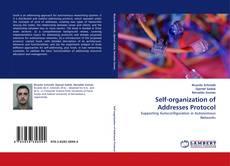 Capa do livro de Self-organization of Addresses Protocol