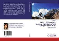 Small Tourism Firms: Owners, Environment and Management Practices的封面