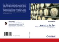 Bookcover of Neurons at the Gate