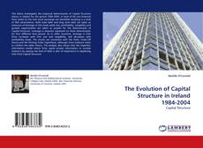 Bookcover of The Evolution of Capital Structure in Ireland 1984-2004