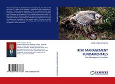 Buchcover von RISK MANAGEMENT FUNDAMENTALS