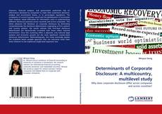 Bookcover of Determinants of Corporate Disclosure: A multicountry, multilevel study