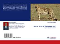 Bookcover of CREDIT RISK FUNDAMENTALS