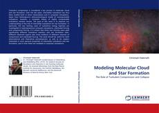 Modeling Molecular Cloud and Star Formation kitap kapağı