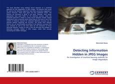 Portada del libro de Detecting Information Hidden in JPEG Images