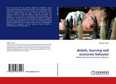 Bookcover of Beliefs, learning and economic behavior