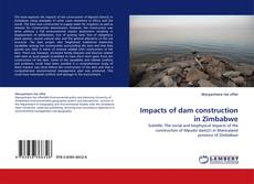 Bookcover of Impacts of dam construction in Zimbabwe